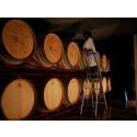 Portugisiska vinmässor i höst