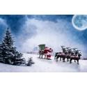 Ändrade hämtningsdagar under jul och nyår