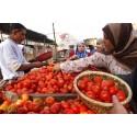 Matsvinn och klimatförändringen i fokus på FAO:s konferens för syd-västra Asien