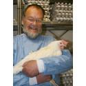 Chicken antibodies can replace antibiotics