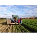 Ny satsning ska öka lönsamheten i länets matföretag