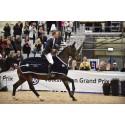Direktkval till Elmia Scandinavian Horse Show från Runsten Equestrian Games