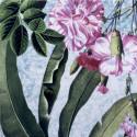 Anthology: Sambonet Kyma Florilegium