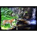 Borås Djurpark Tiger vid vattenfall