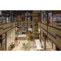 Kinnarps ja Nichetto studio tulkitsevat tulevaisuuden työympäristötrendejä