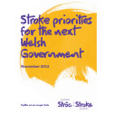 Stroke priorities for the next Welsh government