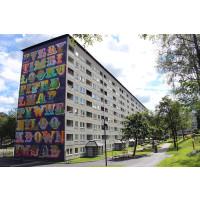 Konst och socialt engagemang i Hammarkullen
