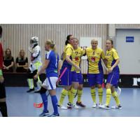 Malmö blir värd för Euro Floorball Tour