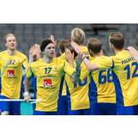 Dags för VM-slutspel för herrlandslaget i Prag