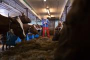 Sølvtine til verdens nordligste melkeprodusent