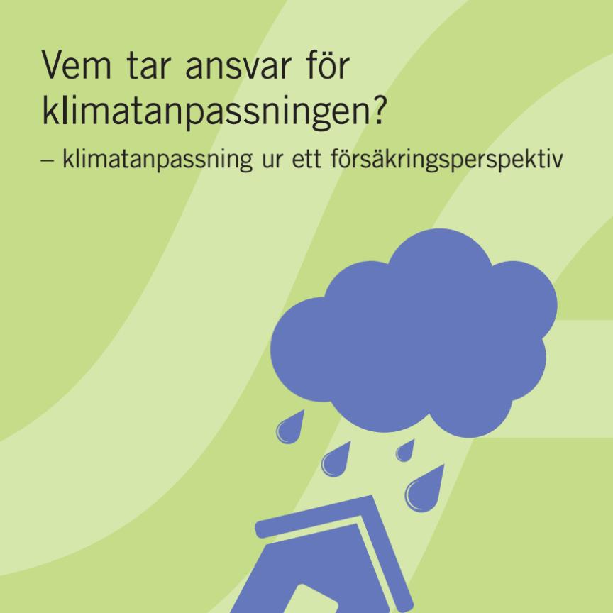 Vem tar ansvar för klimatanpassningen?