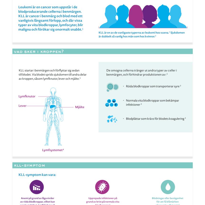 Kronisk Lymfatisk Leukemi (KLL) faktablad