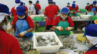 Thailand: Most factories should now be back in full swing