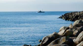 HaV bjöd in experter för att få bild av problemen i Hanöbukten