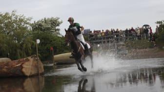 Rekordmånga ryttare till Malmö City Horse Show