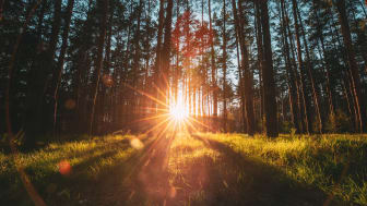 Oslo-Stockholm innebär stora nyttor för klimatet
