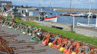 Kivik är ett fiskeläge som ligger på Skånes östkust vid Hanöbukten