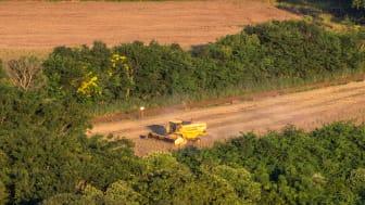 Det er især soja, som her i Brasiliens regnskov, der leder til den høje udeledning, da de tropiske skove ryddes for at gøre plads til sojaen. Foto: Shutterstock