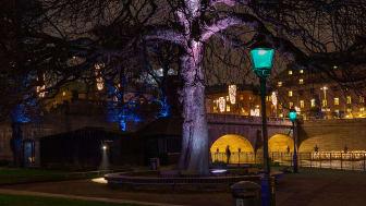 Fox Belysning på Nobel Week Lights 5-13 december