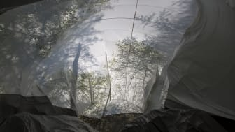 LIFESYSTEMS – NONSPACE, 2019. Vy inifrån. Peter Geschwind & Gunilla Klingberg.