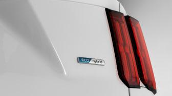 rear led lamps with Eco hybrib emblem