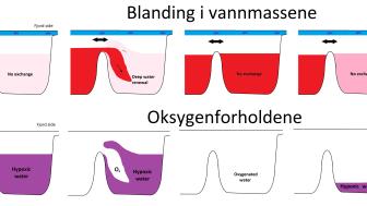 Dypvannsfornyelse Indre Oslofjord