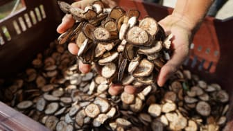 foodora i samarbeid med Nobels fredsprisvinner, FNs World Food Programme
