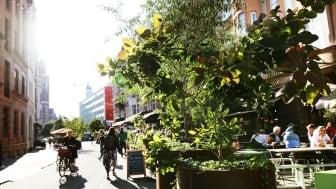 Sommargata på Friisgatan förra året. Snart får Kärleksgatan samma skepnad.