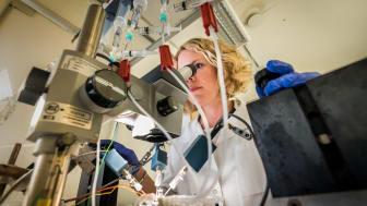 Nina Ottosson är en av forskarna som utvecklar molekyler som kanske kan bli framtida läkemedel mot epilepsi. Foto: Thor Balkhed/LiU