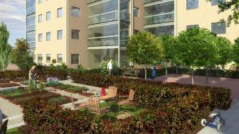 Nu startar vi tre bostadsprojekt på samma dag i Malmö