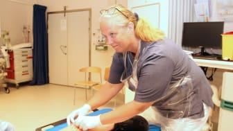 Ingela Sånning ansvarar för Zipline-projektet på akutmottagningen.