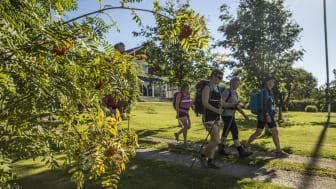 För fem år sedan då S:t Olavsleden återinvigdes kom ett 10-tal pilgrimer. I år kan det bli så många som 1000 vandrare, löpare, cyklister och ryttare från när och fjärran. Förra årets pilgrimer kom från omkring 20 olika nationer.