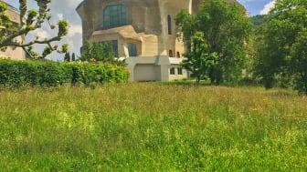 Das Goetheanum – ein Gesamtkunstwerk, eingebettet in die Landschaft (Foto: Sebastian Jüngel)
