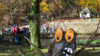 Under Höstfirandet i Skånes Djurpark kan barnen gå på trolljakt i djurparken. I år flyttar omkring femtio nya skogstroll in i parken, och det är barnens uppdrag att leta upp dem. På bild: ett av många skogstroll som gör entré under Höst i Djurparken.