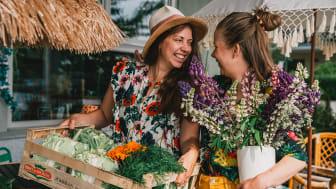 Njut av nyskördade läckerheter, härliga evenemang och goda drycker. Besök gårdsbutiker, restauranger, caféer och odlingar under Skördetid i Halland. Foto: Lisa Lindström