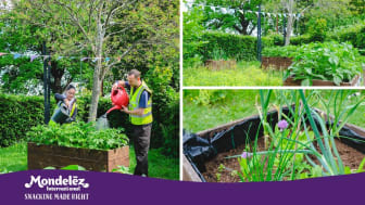 Thriving Green Gym for The Local Community Opens In Bournville