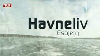 """ESVAGT taking part in """"Havneliv"""" (Harbour Life)"""