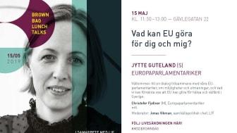 Jytte Guteland Europaparlamentariker