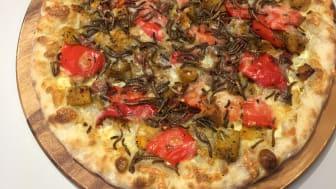 Pizza med melormer er servert! Insekttoppingen er sprø og proteinrik for den som tør, og kan også bli del av fremtidens studentmat.