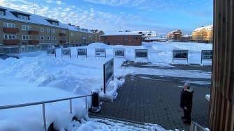 Vinterdäcket erbjuder isbana, pulkbacke och konst.  Foto: Stina Eriksson