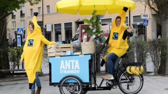 Hjo kommun kom på en fjärdeplats i årets Fairtrade Challenge följt av Sorsele och Västerås. Foto: Fairtrade Sverige.