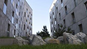 Kvarteret Forskningens grå betonghus fångar upp stenarna i miljön runtomkring och blir en förlängning av berget som de står på. Foto: Anders Siljevall