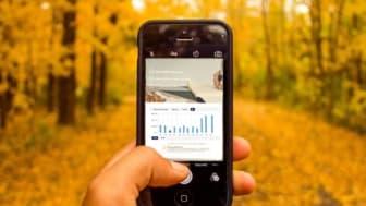 Paysons e-handelsindikator visar: E-handlarna spår stark avslutning på året