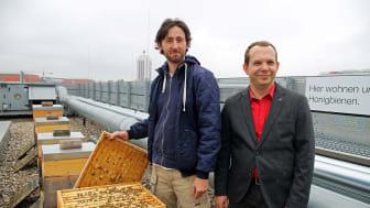 IntercityHotel Leipzig: Tobias Laub (Imkerei Laubinger) und Christian Syrotek (Hoteldirektor) präsentieren die Bienenvölker © Andreas Schmidt
