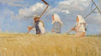 Anna Ancher, Høstarbeidere. 1905. Skagens Kunstmuseer