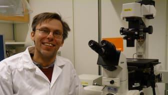 Studie inom stamcellsforskning vid debut av typ 1-diabetes beviljas en halv miljon kronor