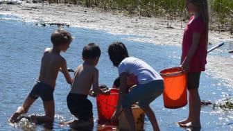 Lions i Piteå samlar in till barn och unga