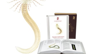 Nationalnyckeln åter i bokproduktion