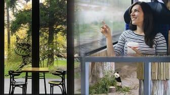 NSG Group introduserer Pilkington SaniTise™ - glasset som bidrar til en sunnere, renere og tryggere verden.