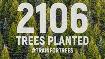 Motosumo users plant 2,106 trees for #TeamTrees